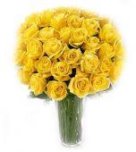Trandafiri cu caldura