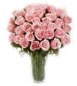 Trandafiri cu dragoste