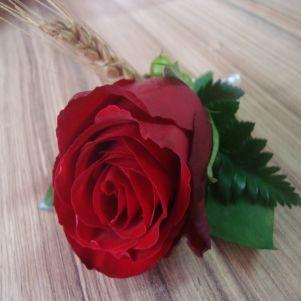 Trandafir si hypericum