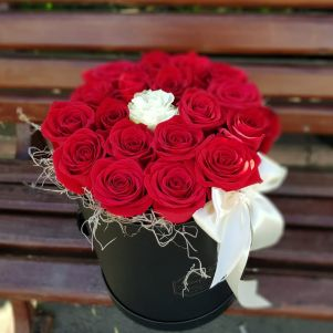 Cutie 19 trandafiri