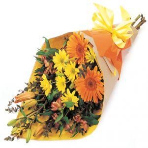 Crizanteme si nu numai...