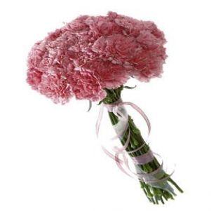 Garoafe roz