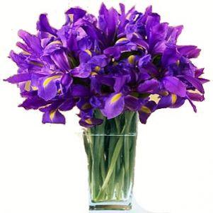 Buchet purpuriu