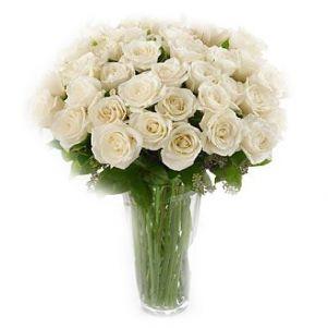 Trandafiri cu sinceritate