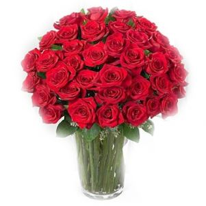 Trandafiri cu pasiune
