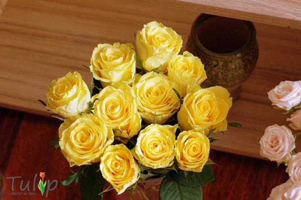 Ce (poate) nu știai despre semnificația trandafirilor